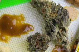 What are concentrates?