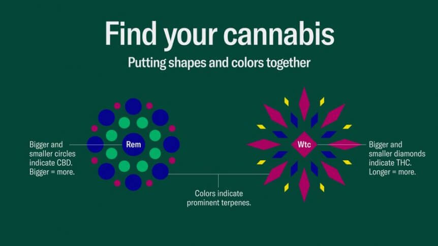 Leafly's new cannabis guide